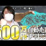 FX、豪ドル/NZドルの自動売買に500万円でチャレンジ!チャンスに飛び乗れ!!(動画)
