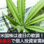 米国株は連日の軟調!大麻株暴落で個人投資家の需給悪化