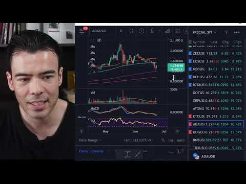 仮想通貨が急騰、今すぐアルトコイン買う(動画)
