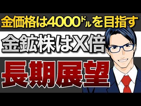 金価格は4000㌦を目指す!金鉱株はX倍に!長期展望(動画)