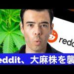 レディットマネー、次は大麻株を狙う…が今朝は大暴落!(動画)