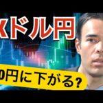 FX ドル円、100円まで下がる?(動画)